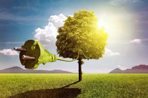 The Australian Energy Savings Schemes are having a big impact - Northmore Gordon